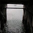 Wallaroo Jetty - the underside. by MuscularTeeth