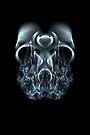 Blue Flame Skull - PostCardArt by owlspook