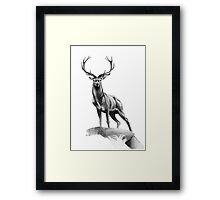 All Muscle - Red Deer Stag Framed Print