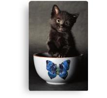Little Butterfly Guy Canvas Print