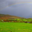 Rainbow - Ireland by Honor Kyne