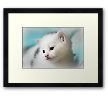 Am I Your Princess? Framed Print