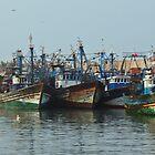 Fishing Fleet by Karen Millard