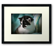 Wellington Framed Print