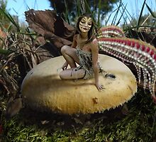 SHROOM FAIRY 2 by DALE CRUM