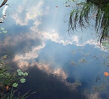 Overturned Sky by Anatoliy