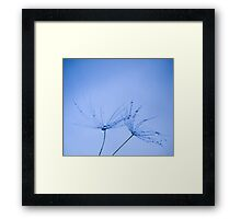 Floating Away With You.... Framed Print