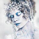 The Arctic Queen by Jennifer Rhoades