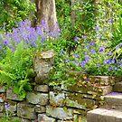 Adorned In Purple by Fara