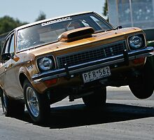 Torana getting up in the air by aokman