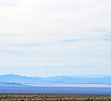 Mojave Dream by Harry Oldmeadow