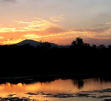 Sunset Reflections by the Coomera River by Kathie Nichols