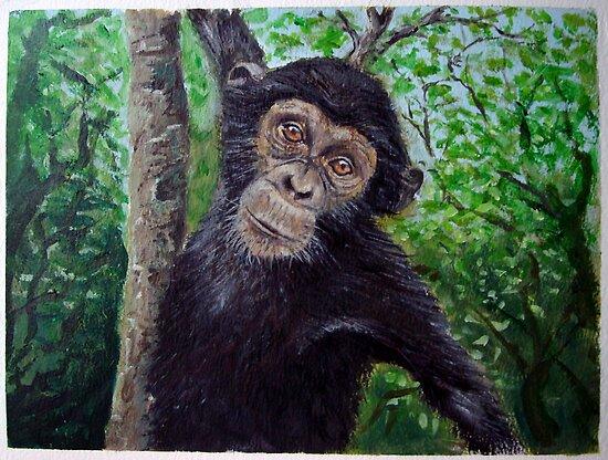 Chimpanzee by Carole Russell