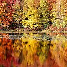 Autumn in PA by labacinelli