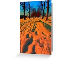 Winter avenue trail at sundown | landscape photography Greeting Card