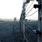 Birkenau by onetonshadow