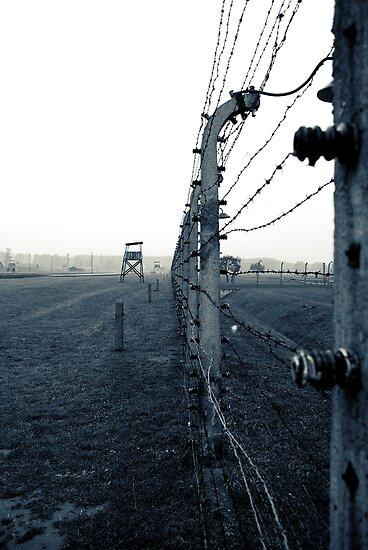 Birkenau by onetonshadow