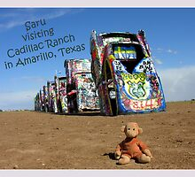 Saru at Cadillac Ranch by LizzieMorrison