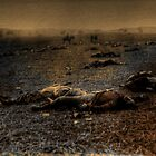 Harvest of Death Mathew Brady and T. O'Sallivan. by Andre Bulyk