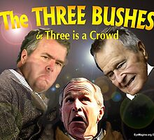 "The Three Bushes in ""Three is a Crowd"" by EyeMagined"
