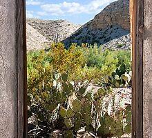 Window by Aaron Kittredge