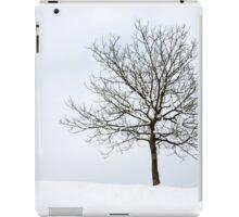 Winter iPad Case/Skin