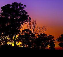 Malcolm Katon -  Sunsets & Sunrises by Malcolm Katon