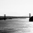 Tacoma Narrows Bridge by DJ Fortune