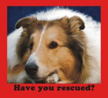 Have You Rescued? by Jan  Wall