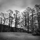 Spooner Hill in Black and White by John  Goodman