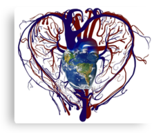 "Anatomical Kind ""Earth Heart"" Medical Circulatory Get Well Kindness Canvas Print"