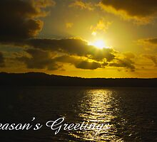 Strahan Harbour sunset, Season's Greetings by Steven Weeks