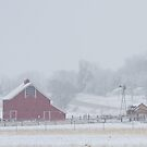 Snowy Country Winter Day by Bo Insogna