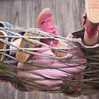 shoes and hammock by Laura  Cioccia