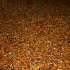 Wet Leaves by Iani
