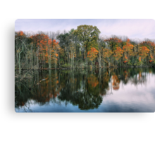 Bitter Cold Fall Day Canvas Print