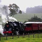 Back in time, Glenbrook, New Zealand by Sandra  Sengstock-Miller