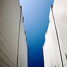 Into The Blue by Adam Devine