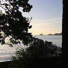 Mumbles Swansea Bay sunrise by desertman