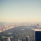 Central Park by thomasrichter
