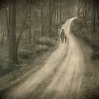 The Road by sergiocolour