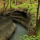 Parnant river through the springtime forest by Patrick Morand