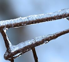 Winter Wire Fence by Otto Danby II