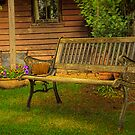 Berrima Bench No 2 by Rosalie Dale