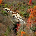 Upper Graveyard Falls, Blue Ridge Parkway, North Carolina by fauselr