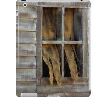 Window Dressing iPad Case/Skin