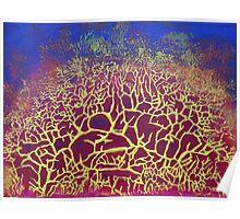 """Natural Frenzy"" original abstract artwork Poster"