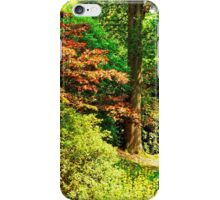 """""""Spring is in the Air..."""" iPhone Case/Skin"""