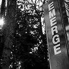 Emerge(ncy) by Veronica Hoffman