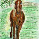 arabian yearling by Fiona Lokot